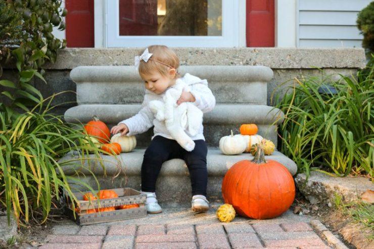 12-1 pumpkin